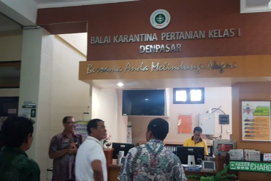 Mentan sidak pelayanan ekspor di Balai Karantina Denpasar