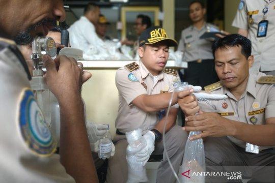 Polisi NTB Gagalkan Penyelundupan Bibit Lobster Bernilai Rp3,96 Miliar