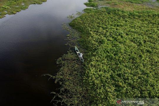 Danau Limboto masuk ke dalam kategori kritis