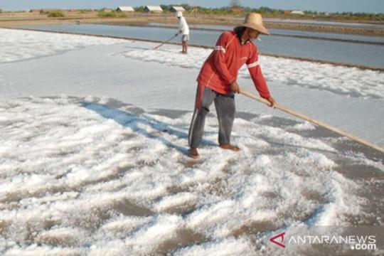 Menperin bantah ada rembesan garam impor