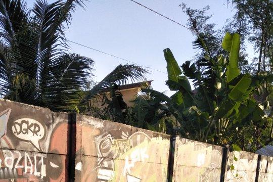 Solusi atasi TPS ilegal di Mataram, DLH minta warga taati jam buang