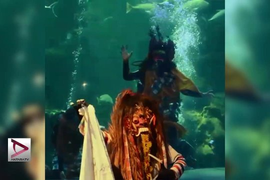 Keren, Ada Barongan Di Kolam Sea World Ancol