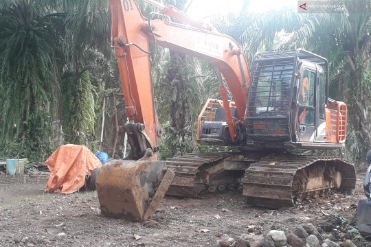 Polres Pasaman Barat tetapkan tiga tersangka perambah hutan produksi