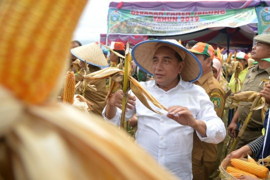 Produksi jagung 1,7 juta ton menjadi target Sumatera Utara