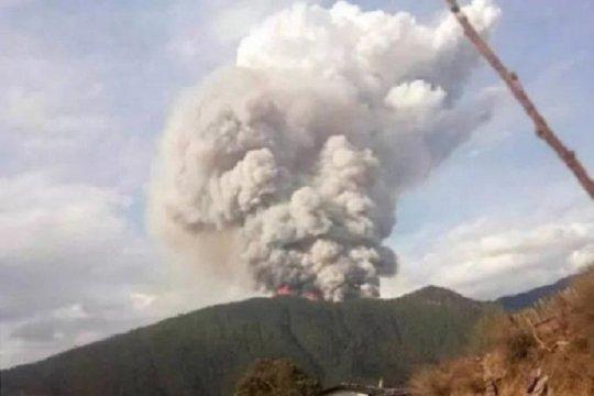 Korban Tewas Akibat Kebakaran Hutan di China 30 Orang