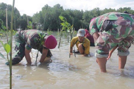 Ribuan mangrove ditanam Brigif 4 Marinir/BS-warga di pesisir Lampung