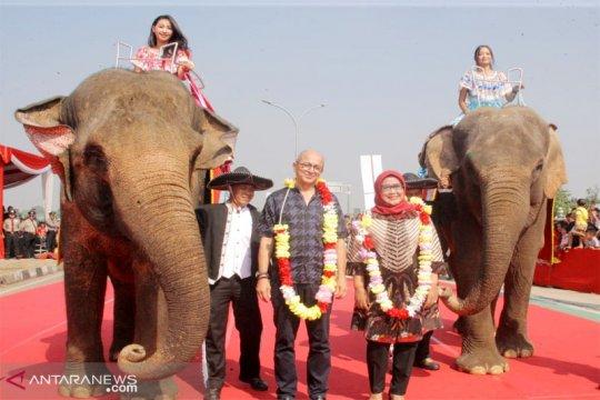 Dua gajah betina dari Taman Safari meriahkan Bogor Fest