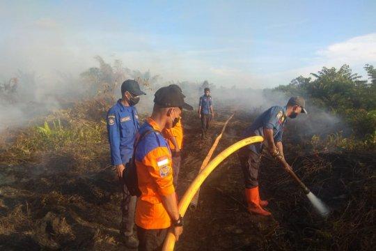 8 hektare lahan kelapa sawit terbakar di Aceh