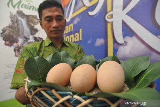 Pengamat burung minati hutan Taman Nasional Lore Lindu