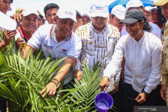 Insentif PTPN V dongkrak harga karet petani Riau