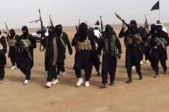 Serangan udara AS di Somalia tewaskan tiga anggota ISIS