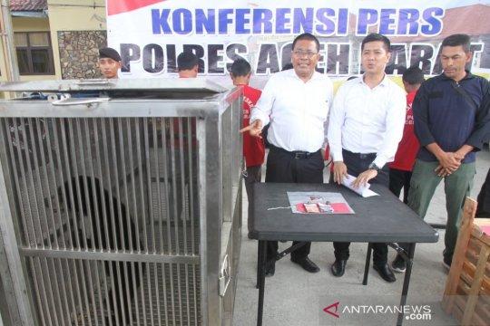 Polisi Aceh Barat amankan beruang madu yang diperdagangkan