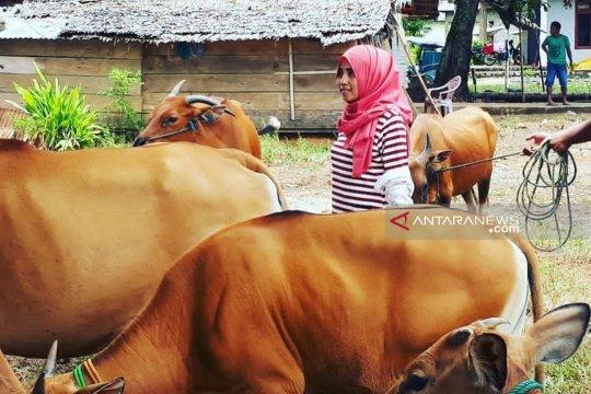 """Keinginan """"Kartini"""" Gorontalo Utara meningkatkan sektor peternakan"""