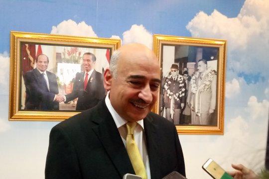 Referendum amandemen konstitusi tak akan pengaruhi hubungan Mesir-RI