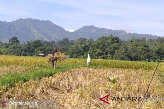 Indonesia perlu waspadai menghangatnya suhu udara dunia