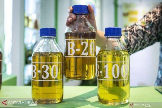 Mulai 1 Juli harga biodiesel naik jadi Rp6.970