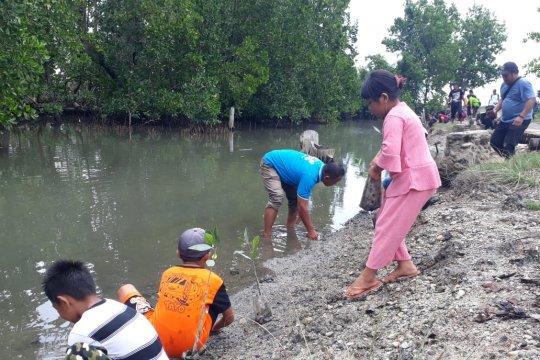 Wisata mangrove Ocone-Parimo dikenalkan pada peringatan hari bumi