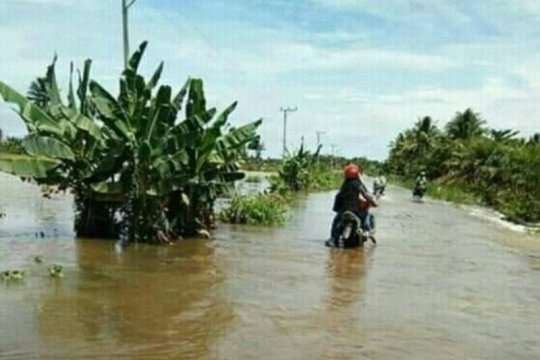 Banjir rendam dua kecamatan di Mamuju Tengah