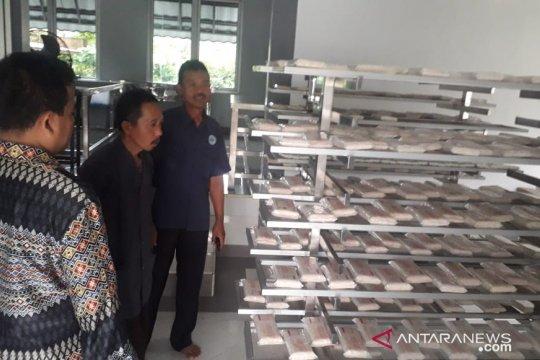 Mau belajar membuat tempe, ada Rumah Tempe Indonesia di Bogor