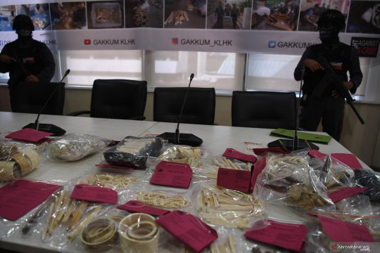 WWF apresiasi KLHK serius tangani perdagangan ilegal satwa liar