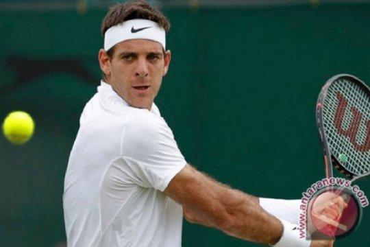 Lanjutkan rehabilitasi lutut, Del Potro mundur dari US Open