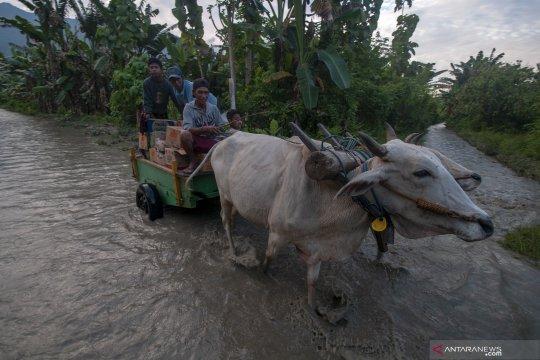 Jalur Palu-Kulawi kembali putus total
