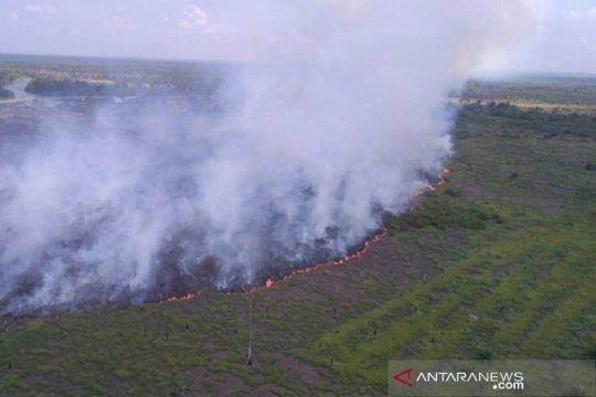 Satgas berjibaku padamkan Karhutla di zona inti Cagar Biosfer Riau