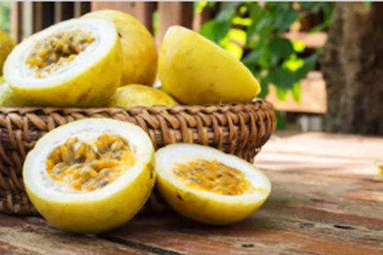 Manfaat biji markisa untuk kesehatan, kulit dan rambut