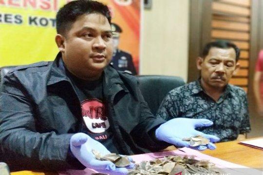Polres Kotawaringin Timur tangkap  penjual sisik trenggiling