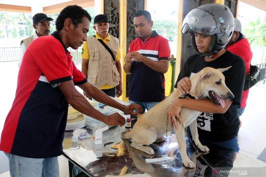 Pemeriksaan hewan peliharaan di Ambon