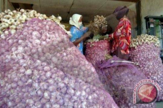 Harga bawang putih di Palembang masih tinggi