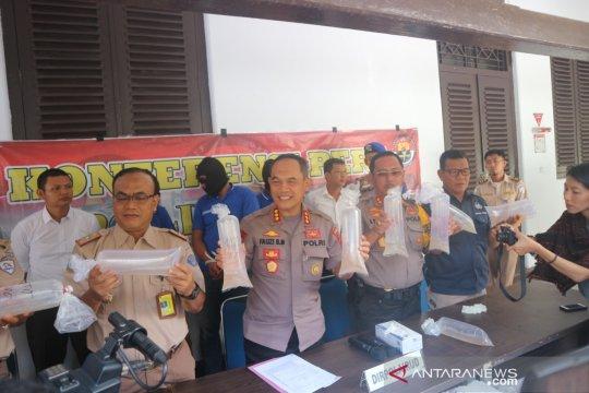 BKIPM Jambi lepasliarkan 124.500 benih lobster ke perairan Padang