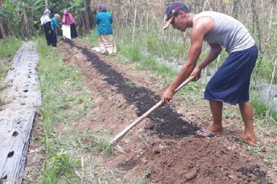"Mahasiswa Unimed mengajak petani Deli Serdang gunakan ""Terra Preta"""
