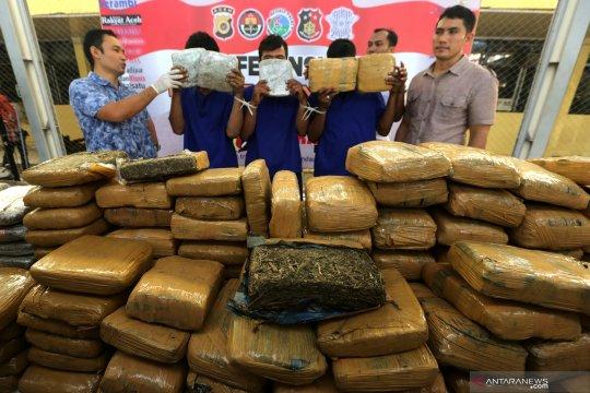 Polda Bali tangkap pengedar 1,17 kilogram ganja