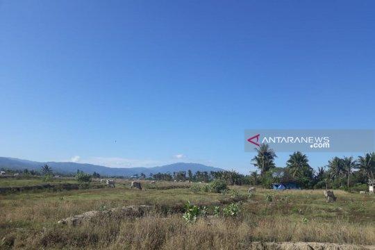 Petani di Biromaru-Sigi tidak kembali bertani pascabencana