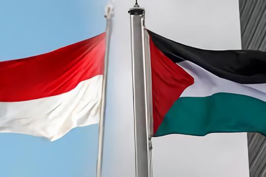 DPR RI tegaskan kembali dukungan untuk perjuangan Palestina