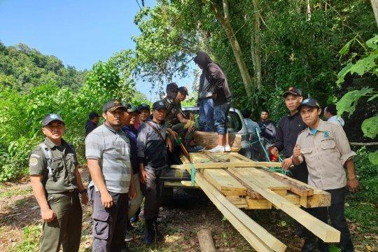 Polisi tangkap pelaku perusak hutan di Sumbawa Barat