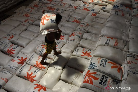 Bulog siapkan beras medium dan premium untuk dominasi pasar BPNT