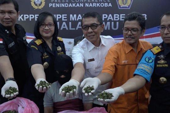 Narkoba baru asal Etiopia masuk Sumatera Utara