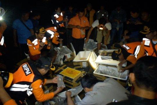 BKIPM Yogyakarta lepasliarkan Baby Lobster senilai Rp11,5 miliar