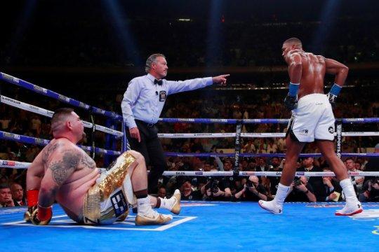 Joshua dan Fury sepakat naik ring tahun depan