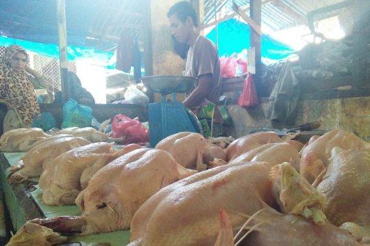 Harga ayam di Pekanbaru naik mencapai Rp27.000 menjelang Lebaran
