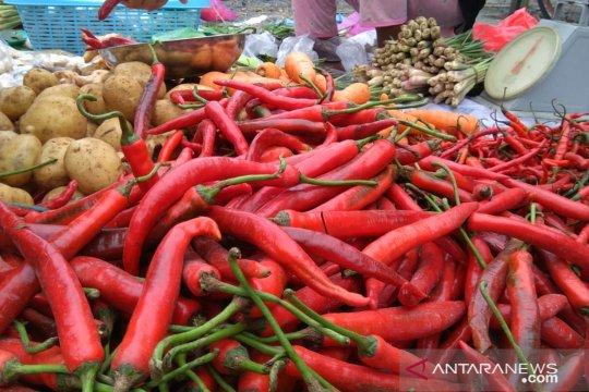 Harga cabai merah di Makassar capai Rp70 ribu per kilogram