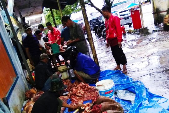 Harga daging sapi di Biak Rp150 ribu per kg