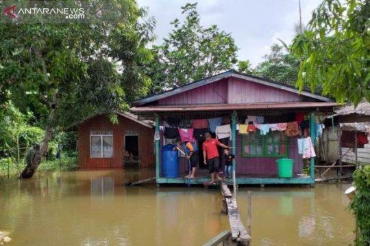 Banjir masih merendam sejumlah wilayah Penajam Paser Utara