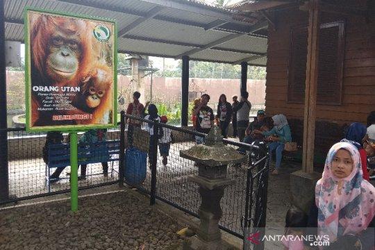 Belasan ribu orang berwisata ke Taman Satwa Cikembulan di Garut