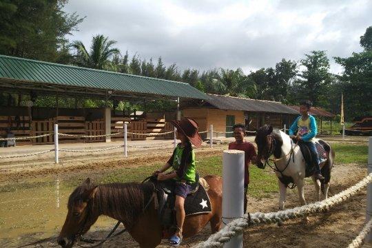 Isi libur Lebaran, berkuda jadi ajang favorit warga