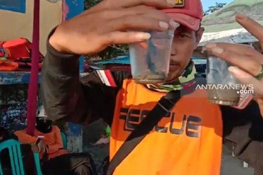 Wisatawan korban sengatan ubur-ubur di Sukabumi menjadi 92 orang