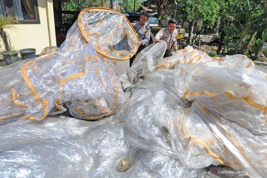 Polisi Wonosobo amankan puluhan balon udara dan periksa enam pelaku