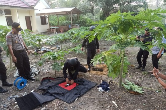 Tiga granat nanas temuan warga Bajubang Jambi dimusnahkan